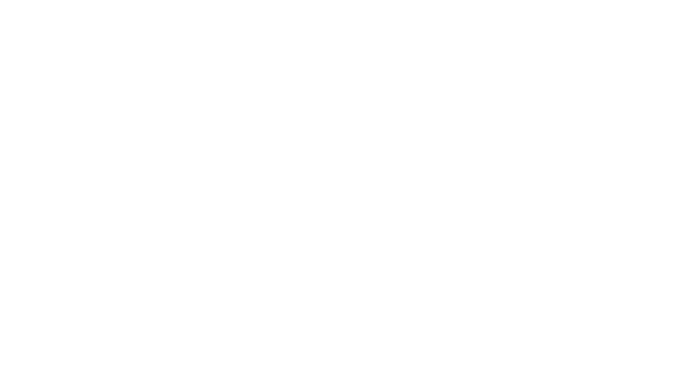 oc white video inspection